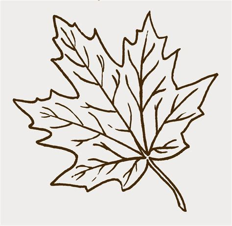 leaf cut out leaf cut out template clipart best