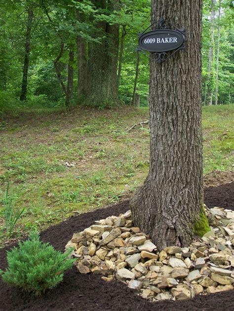 tree base landscaping ideas