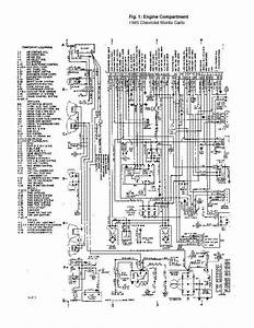 Peugeot Partner 2008 Wiring Diagram