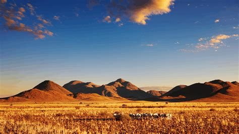 National Geographic Kalahari Desert