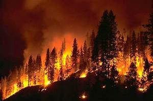 From California to Wisconsin, Record-Breaking Wildfire ...