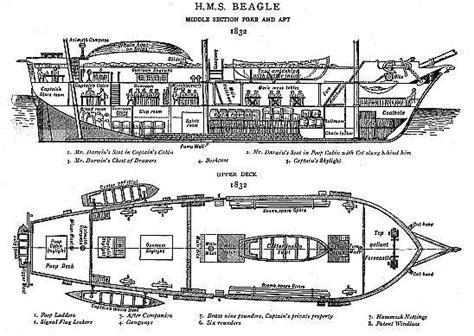 voyage   beagle  charles darwin preface