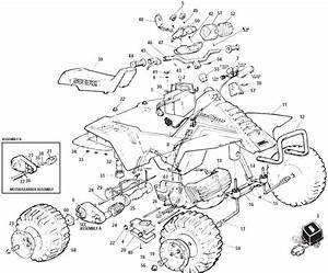 2000 King Quad 300 Wiring Schematic