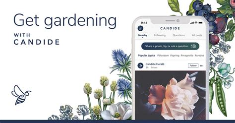 Candide Gardening