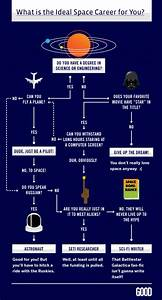 Astronaut Career Flow Chart