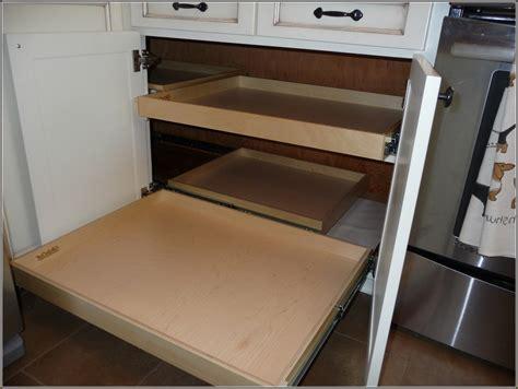 Blind Corner Kitchen Cabinet Ideas by Blind Corner Cabinet Pull Out Hardware Home Design Ideas