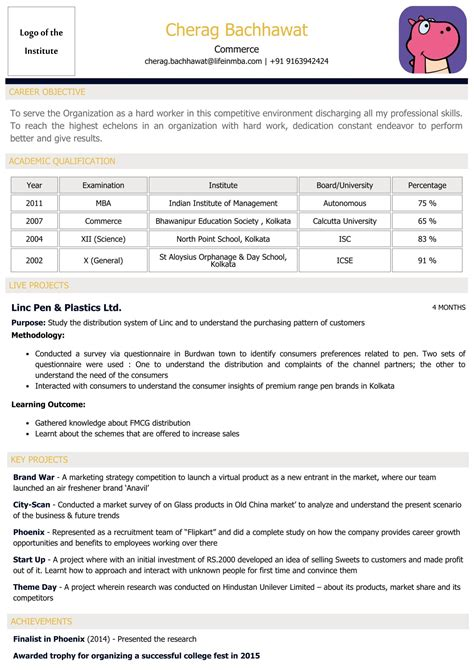 Resume Experts by Welcome To Cvdragon The Resume Experts