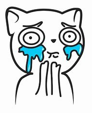 Cat Crying Meme Face
