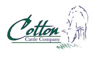 Cattle Company Logo Design