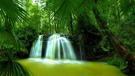 green forest wallpaper beautiful nature waterfall green forest hd wallpaper Beautiful