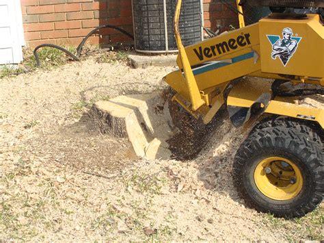 stump removal in houston l dirtwirx inc