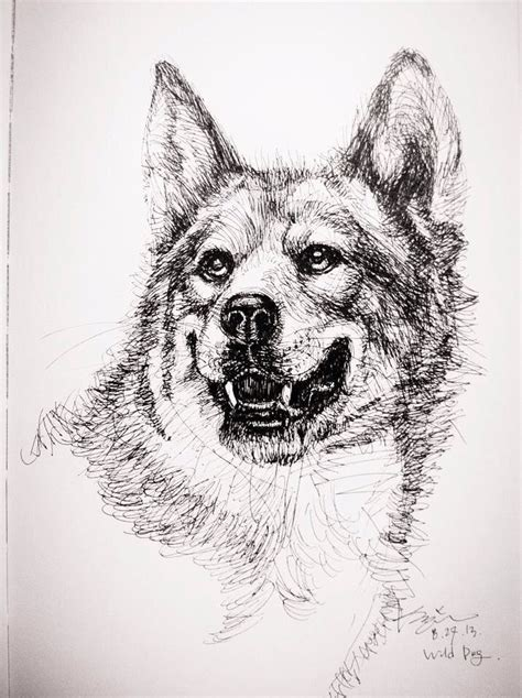 cterrytorys drawing instagram terrytory dogs