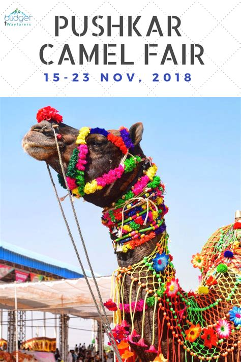 Pushkar Camel Festival Background by Pin On India Travel Destinations Guides