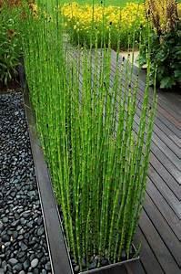 17 meilleures idees a propos de decoration de bambou sur With idee amenagement jardin paysager 1 haie de bambous une idee de plus en plus seduisante