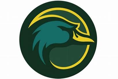 Oregon Ducks Political Dimension Softball Basic College