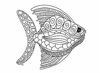 Fische Malbuch Erwachsene Fur Fishes