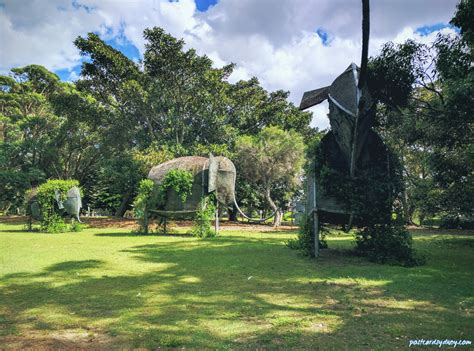 sydney joseph banks sir parks park places gardens parraparents elephant zoo