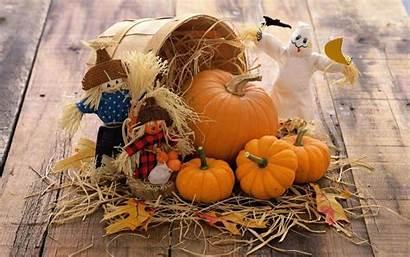 Pumpkin Autumn Widescreen Desktop Wallpapers Harvest Apple