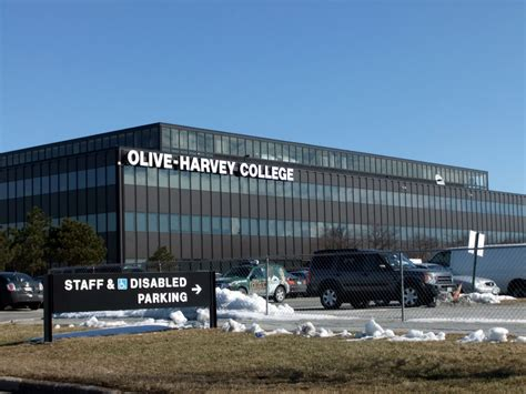 Oliveharvey College  Cook County College Teachers Union. Home Contents Insurance Ireland. Paralegal Education Online Credit Card Freeze. Best Gaming Laptop Under 750. Business Administration In Accounting. House Cleaning Services Denver Co. How To Tell Time In Italian Flight Of Angels. Online Nursing Programs Indiana. How Not To Bite Your Nails Buy Annuity Leads