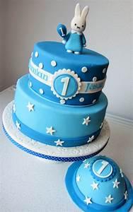 Gateau Anniversaire Garcon : nijntje taart met meptaartje feesttaarten pinterest ~ Melissatoandfro.com Idées de Décoration