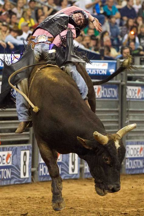 top local bull rider hopes  win  ymbl rodeo