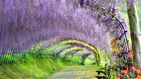 los  lugares mas hermosos de japon cnn