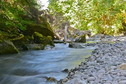 Olympic National Peninsula Staircase Hikes River Park