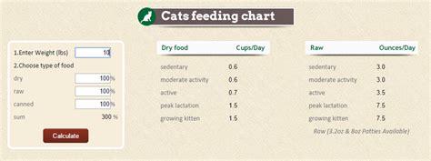 feed  cat wet food foodstutorialorg
