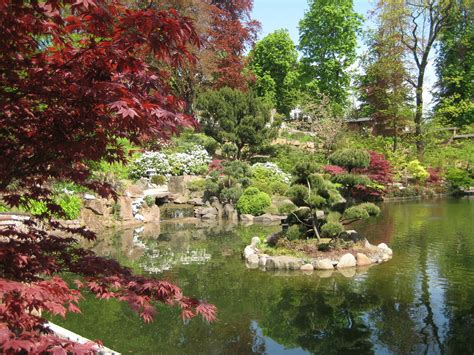 Japanischer Garten by Japanischer Garten Foto Bild Landschaft Garten