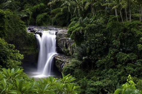 Green Bali Tour Bali Tour Operators