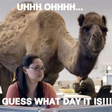 funniest hump day commercials weve