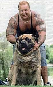 The World's Biggest Animals