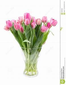 Tulpen In Vase : blumenstrau der rosa tulpen in einem klaren vase stockfotografie bild 29933842 ~ Orissabook.com Haus und Dekorationen