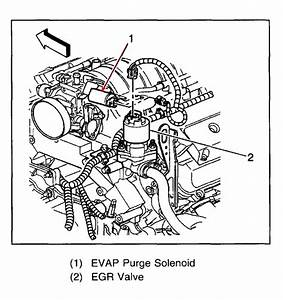 Service Manual  Evap Hose Removal 2008 Cadillac Dts