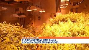 medical cannabis clinic pensacola