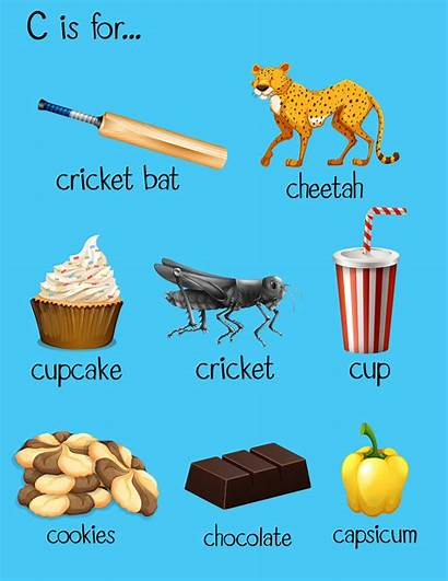 Words Alphabet Different Vector Clipart Freepik
