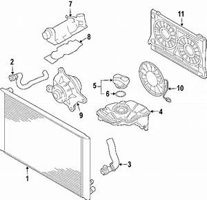 07d121111an - Engine Coolant Thermostat Kit  6 0 Liter  Primary  A8