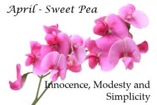 April Birth Flower Sweet Pea