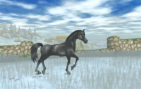 welches pferd soll ich  star stable kaufen pferde
