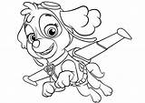 Paw Patrol Coloring Skye Lesson sketch template