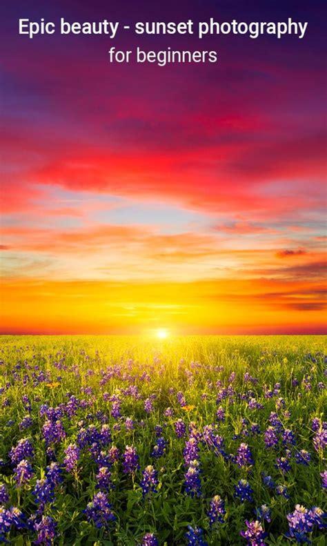 epic beauty sunset photography  beginners wall art