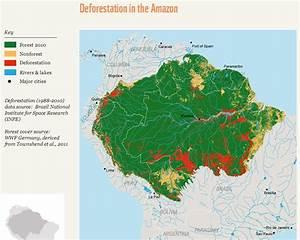 Amazon Rainforest Deforestation Map   www.pixshark.com ...
