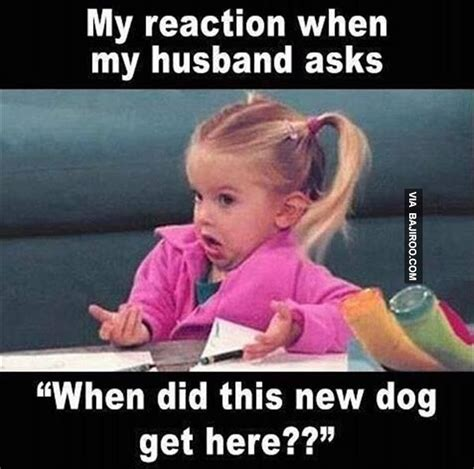 Funny Memes About Love - women love dogs funny reaction meme bajiroo com