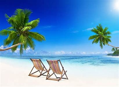 Tropical Paradise Beach Summer Sand Palm Vacation