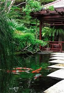 carpes koi dans le bassin a poisson moderne en 40 exemples With nice amenagement jardin avec bassin 8 artcane