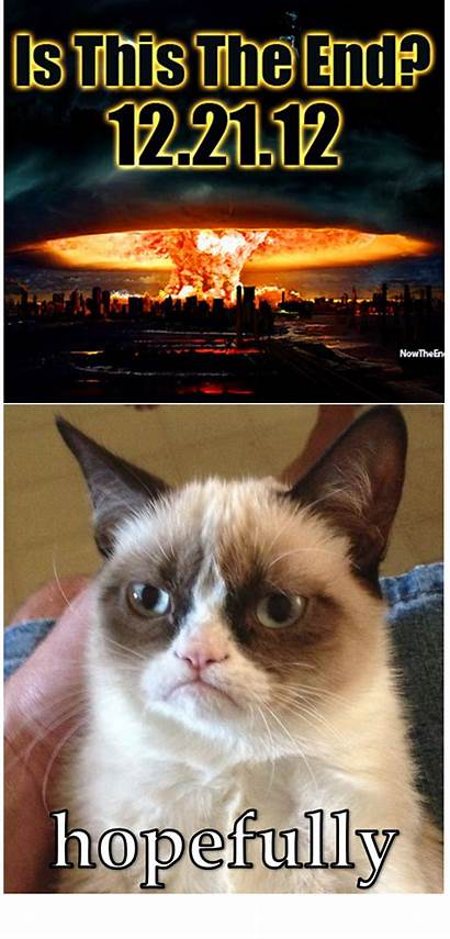 Goodbye Cruel Cat Meme Grumpy Funny Iwastesomuchtime