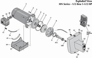 Sta Rite Projet Hn Series Shallow Well Jet Pump Parts Diagram