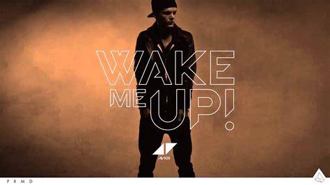Wake Me Up 2013 [hd]