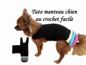 Video Pour Chien : tuto manteau chien crochet toutes tailles dog clothing knitting crochet wiggly all size youtube ~ Medecine-chirurgie-esthetiques.com Avis de Voitures