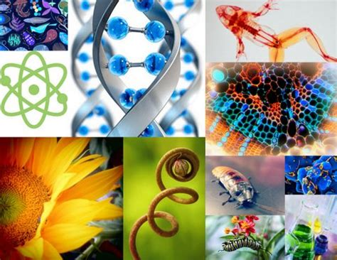 University of Wyoming | Collage of arts and sciences ...